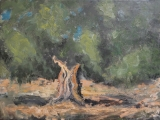 "<h5>L'olivier</h5><p>Oil on canvas, 38¼"" x 51¼"" (97 x 130cm)</p>"