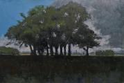 """<h5>Groupe d'arbres dans la plaine</h5><p>Oil on canvas, 51¼"""" x 76 ¾"""" (130 x 195cm)</p>"""