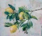 """<h5>Limoncello no. 3</h5><p>Oil on canvas, 20¼"""" x 23½"""" ( 51 x 60 cm)</p>"""