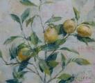 """<h5>Limoncello 6</h5><p>Oil on canvas, 24¼"""" x 27¾"""" (62 x 70cm)</p>"""