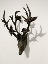 """<h5>Sapling Deer</h5><p>Bronze, 25½"""" x 16"""" x 14"""" (65 x 40.6 x 35.5cm)</p>"""