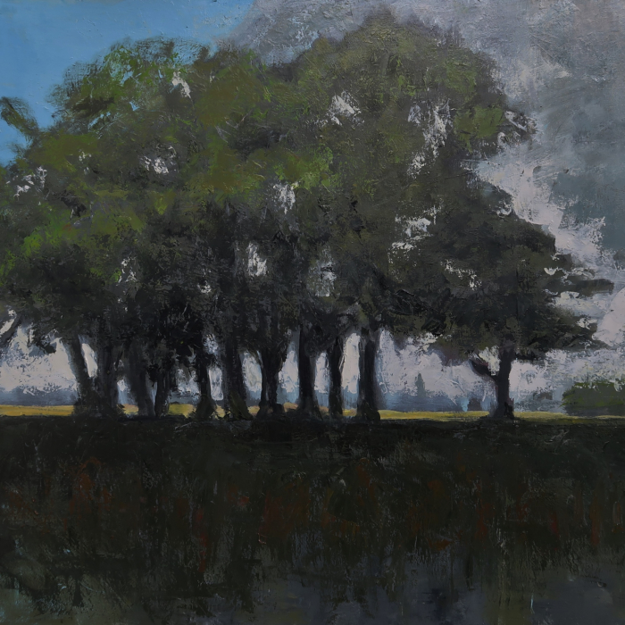 Oil on canvas painting of a stand of trees with the dark earth beneath and the blue sky behind by Albert Hadjiganev titled Groupe d'Arbres dans la Plaine.