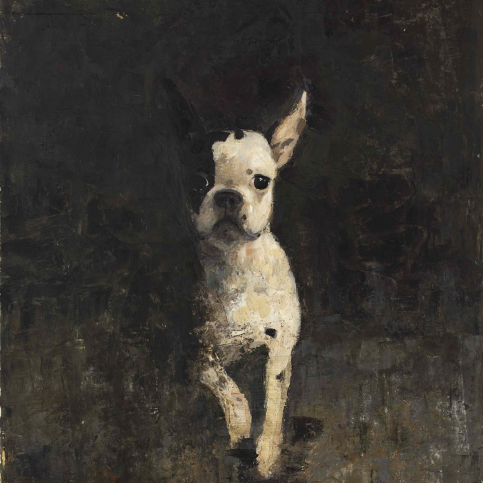 """Oil and wax on canvas painting of perky, black and white Boston terrier leaping from the shadows by Goxwa titled """"Portrait of Pipo."""""""
