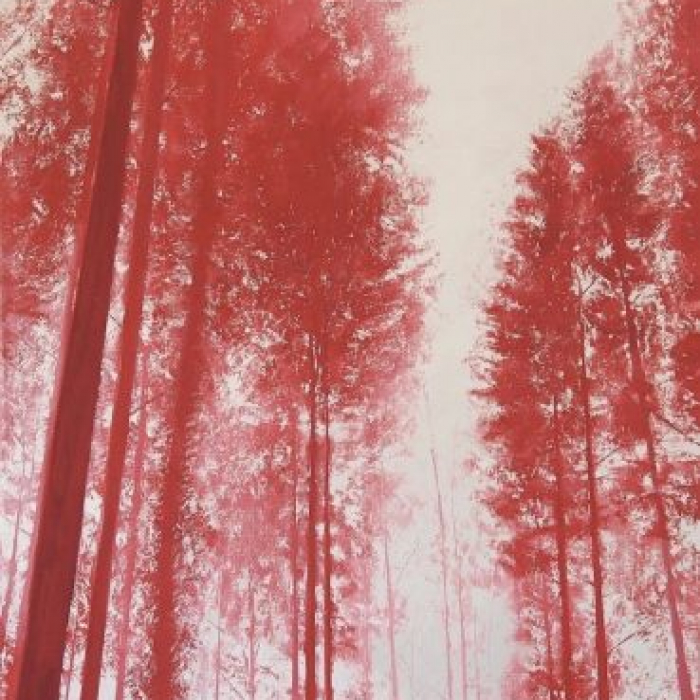 """Oil on canvas painting of a view through a forest of tall pine trees, everything awash in red, by Benoît Trimborn titled """"Brouillard Rouge."""""""