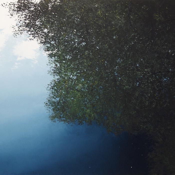 """Arborescence Anachronique"", oil on canvas, 39¼"" x 47¼"" (100 x 120cm)"