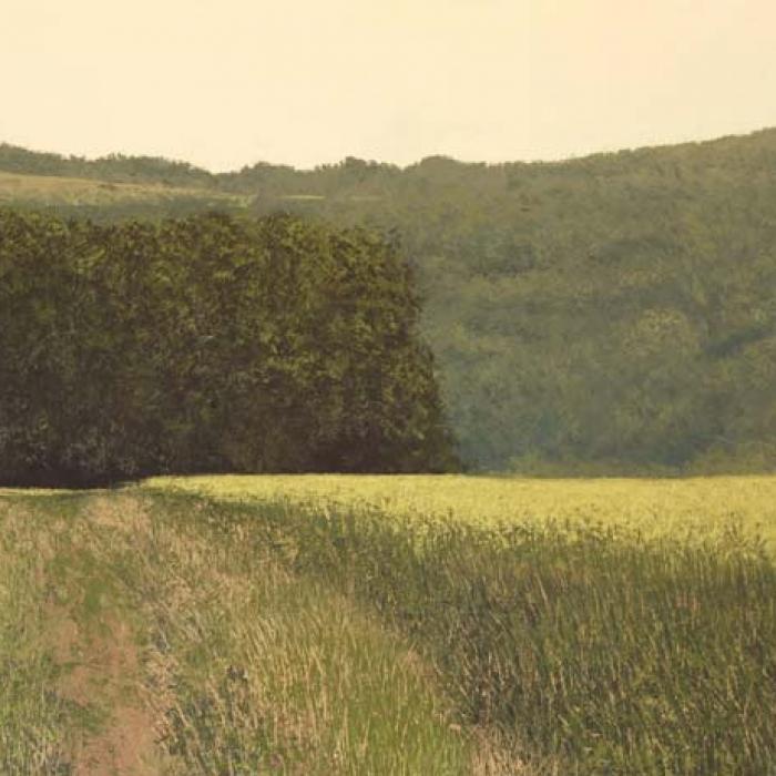 """Colline II"", oil on canvas, 44¾"" x 63¾"" (114 x 162cm)"