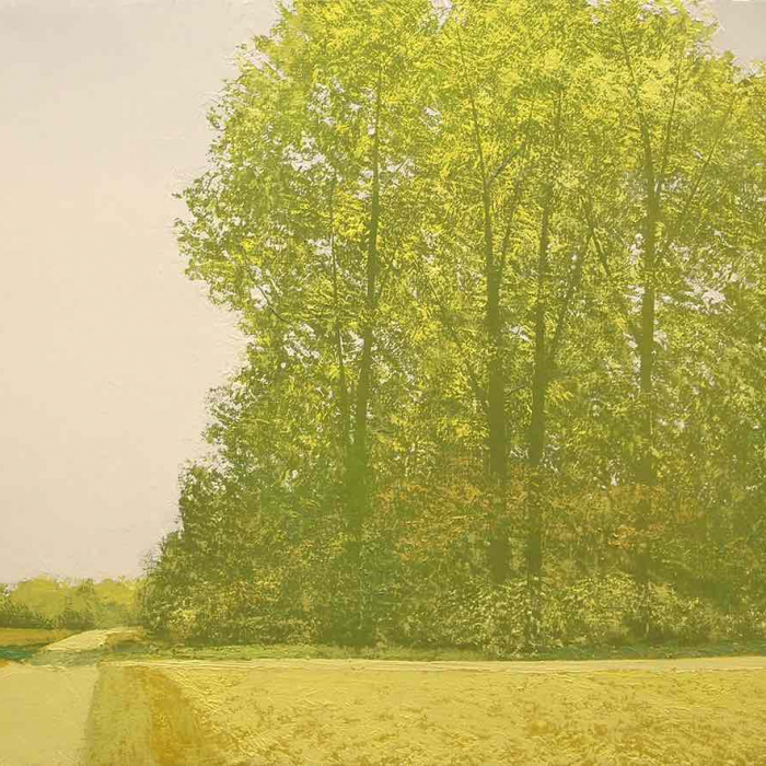 """Oil on canvas painting of a country road through a meadow and trees, awash in chartreuse, by Benoît Trimborn titled """"Paysage dans le Jaune"""""""