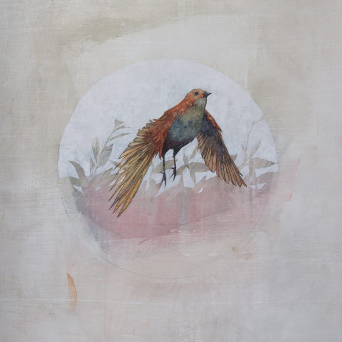 """Medicine bird I"", Graphite and Acrylic on Paper, 38"" x 30"" (96.5 x 76cm)"